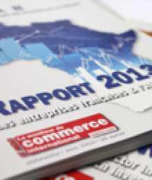 Rapport CIAN 2013 - Les entreprises françaises & l'Afrique