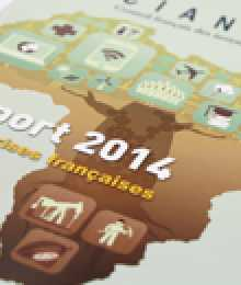 Rapport CIAN 2014 - Les entreprises françaises & l'Afrique